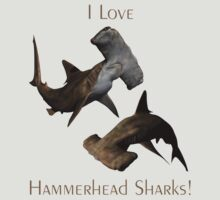 I Love Hammerhead Sharks by Lisa  Weber