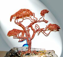 New Bonsai by coppertrees