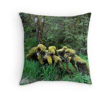 Treebeards Sofa Throw Pillow