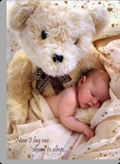Teddy Bear Dreams by Melissa Arel Chappell