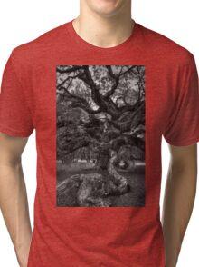 Angel Oak Tree 2 Tri-blend T-Shirt