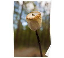Roasting Marshmallows Poster