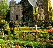 Hatley Castle by Rebecca Cruz