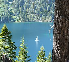 White Sail Boat at Emerald Bay, Lake Tahoe by Kosan