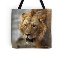 Portrait, Large Male Lion, Maasai Mara, Kenya  Tote Bag