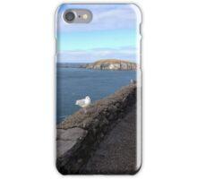Ireland - Dingle Peninsula iPhone Case/Skin
