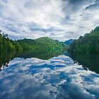 Gordon River by Neil