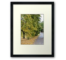 Ireland - Blarney Walk Framed Print