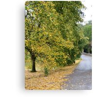 Ireland - Blarney Walk Canvas Print