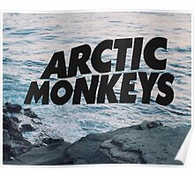 Arctic Monkey Ocean Shore Poster
