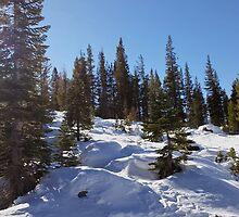 Snowy Scene 1 by Aaron Del Carlo