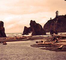 sea stacks at ruby beach, washington, USA by JMDunworth