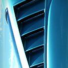 Mustang Gills by RedB