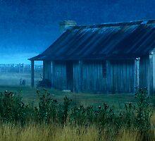 Misty Morning by Dulcie