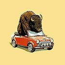 Bison in a Mini by James Fosdike