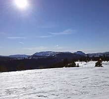Snowy Scene 2 by Aaron Del Carlo