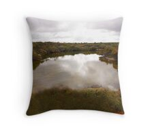 Bilabong in Fitzgerald River National Park. 1835 views Throw Pillow