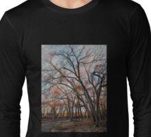 Winter Solstice Long Sleeve T-Shirt