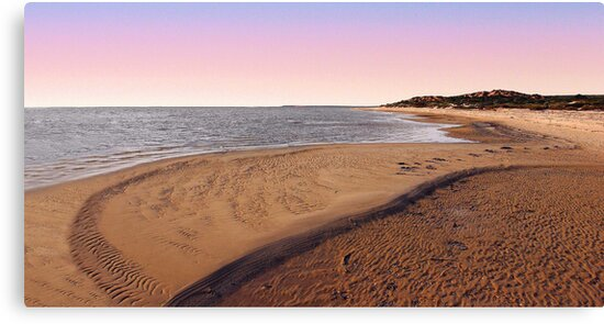 Shark Bay Beach At Dawn  by EOS20