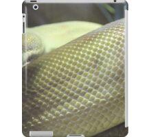 Olive iPad Case/Skin