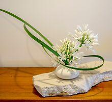 Ikebana arrangement with agapanthus by Alexander Evans