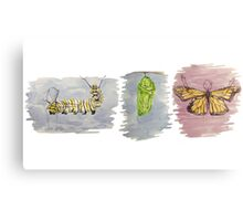 Metamorphosis Trio Canvas Print