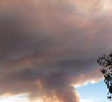 The Start of worst Bushfire since Ash Wednesday 1983 Sth. Aust. by Rita Blom