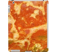 Streaks of Nature iPad Case/Skin