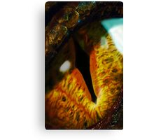 The Eye of Smaug Canvas Print