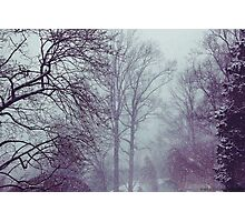 Winter Storm Photographic Print
