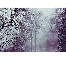 Winter Storm Photographic Print