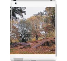 Central Park in Autumn iPad Case/Skin