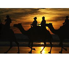 Sunset Camels Photographic Print