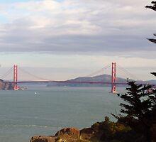 San Francisco 07 by Briana Castorina