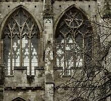 Gothic Cathedral by TonyPriestley