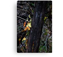 do yu see now? Canvas Print