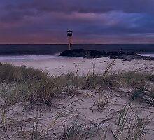 Floreat Beach by John Pitman