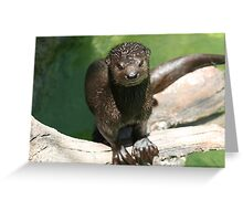 """""""Do you have to go so soon"""" Greeting Card"""