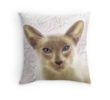 Card Only Throw Pillow