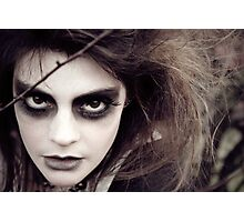 The Ravens Rag Doll Photographic Print