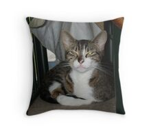 Are you done now? Throw Pillow