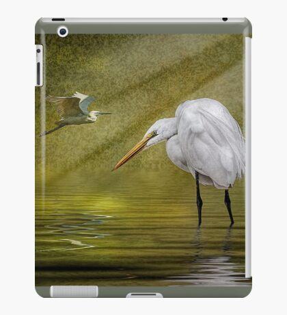 Everglades Evening iPad Case/Skin
