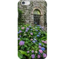 Colourful Hydrangeas iPhone Case/Skin