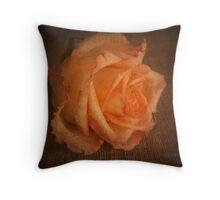 Rose Vignette Throw Pillow