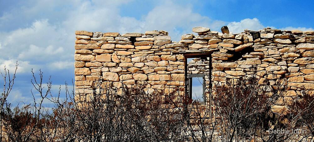 Terlingua Texas by Debbie Irwin