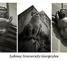 Sydney University Gargoyles. by George Petrovsky
