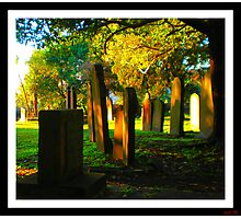 peace in the silence Photographic Print