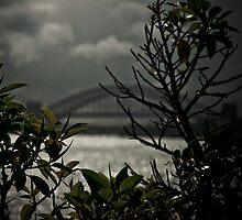 Sydney Harbour Bridge by DASH