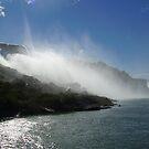 Niagara Falls by sally-ann rawlinson