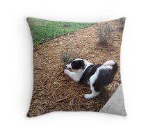 Shrub Attack Throw Pillow